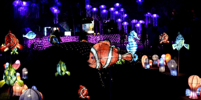 2019台灣燈會在屏東 海底世界裡的珊瑚之心 建築結構藝術與光影藝術巧作